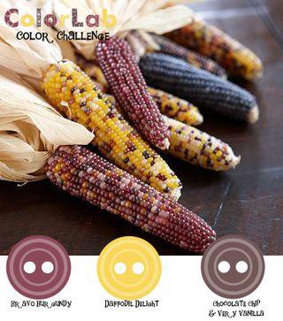 ColorChallenge17