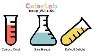 ColorChallenge51
