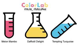 ColorChallenge45