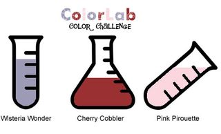 ColorChallenge48