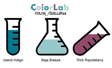 ColorChallenge49