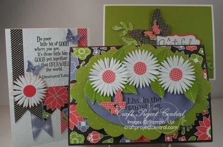 Love in the Sunshine Box & Cards